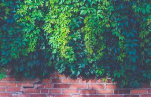 pexels photo 227396 min 300x194 - millieuvriendelijke betonvloer