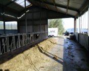betonvloer renoveren